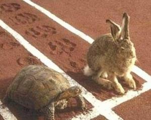 """La fable de Jean de la Fontaine """"le lièvre et la tortue"""" n'est pas véridique en MLS"""